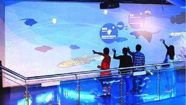 科技展厅设计中墙面互动投影有什么优势?大概多少钱?